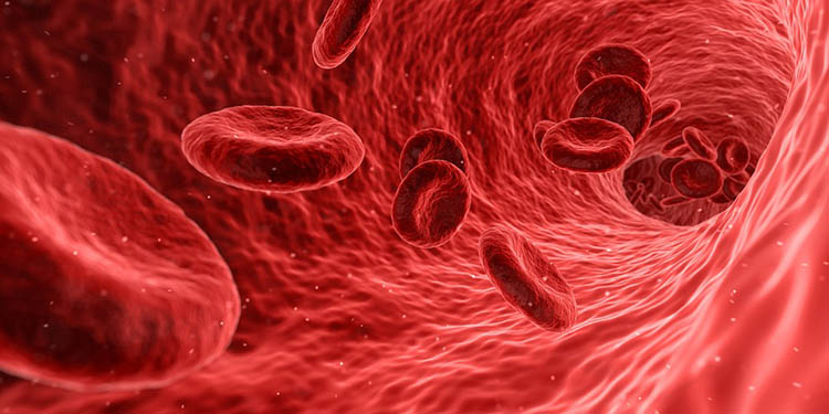 blood-1813410_960_72s0